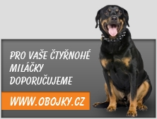 Doporučujeme: Obojky.cz